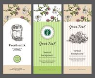 Milk can and meadow flowers. Set of vertical banners. Templats for packaging, flyers, banners. Suitable for the design vector illustration