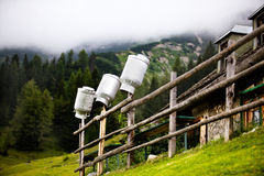 Milk Cans Stock Image