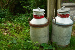 Milk cans jugs in a farm Royalty Free Stock Image