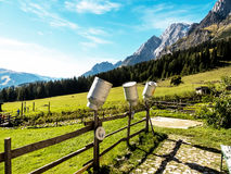 Milk cans on a mountain pasture Stock Images