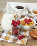 Milk and cereal royalty free stock image
