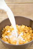 Milk with cereals Stock Image