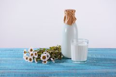 Bottle and glass of fresh milk with chamomile flowers on turquoise. Wooden tabletop stock photography