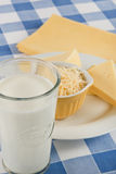 Milk and Cheese as nutrients or allergens Royalty Free Stock Images