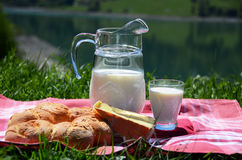 Milk, cheese and bread Stock Photos