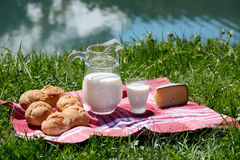 Milk, cheese and bread served at a picnic in an Alpine meadow, S Stock Image