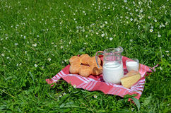 Milk, cheese and bread served at a picnic Royalty Free Stock Photography