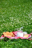 Milk, cheese and bread served at a picnic Stock Image
