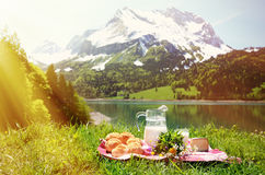 Milk, cheese and bread served at a picnic Stock Photography