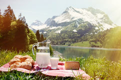 Milk, cheese and bread served at a picnic Stock Photo
