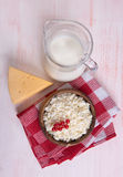 Milk, cheese and cottage cheese Royalty Free Stock Photos