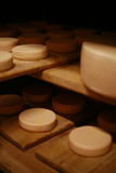 Milk cheese. Cow milk cheese, stored in a wooden shelves Stock Images
