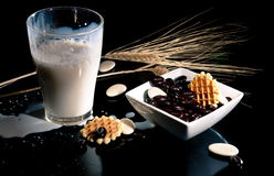 Milk with chocolade coffee beans and waffels. Still life composed of milk in a glass and chocolade coffee beans and waffels royalty free stock image
