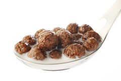 Milk and chocolate balls Stock Images
