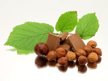 Milk chocolate with hazelnuts and leafs Royalty Free Stock Photo