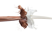 Milk and chocolate. Splashing together Stock Image