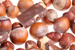 Milk chocolate and wood nuts Royalty Free Stock Image