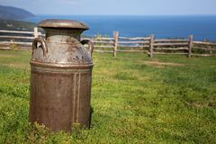 Milk churn in field Royalty Free Stock Images
