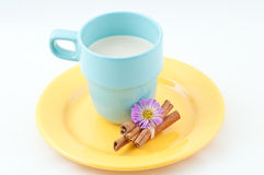 Milk and cinnamon. Milk in a light blue cup and cinnamon on a yellow plate with a violet flower Stock Photos