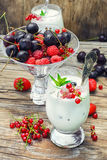 Milk cocktail with berries Royalty Free Stock Image