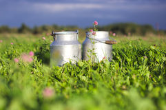 Milk containers. Two milk containers and the background of grass and clovers, forest and sky royalty free stock photography