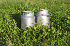 Milk containers and green grass of clovers Royalty Free Stock Photos