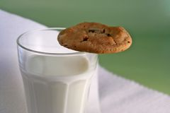 Milk and cookie. Milk with cookie royalty free stock photo