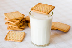 Milk and cookies. Glass of fresh milk and cookies on the table stock photos