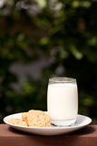 Milk and Cookies Royalty Free Stock Photo