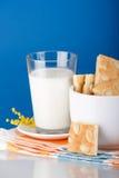 Milk with cookies. Breakfast of milk with cookies Stock Photo