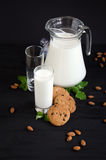 Milk and cookies with almonds and mint Stock Images
