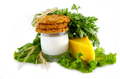 Milk, cookies, cheese, parsley, salad and ears. Stock Photos