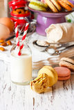 Milk and cookies. Stock Photography