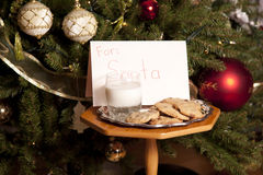 Milk and cookies for Santa. Milk and cookies in front of a Christmas tree for Santa Royalty Free Stock Images