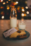 Milk and cookies for Santa Claus Royalty Free Stock Images