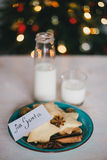 Milk and cookies for Santa Claus Stock Image