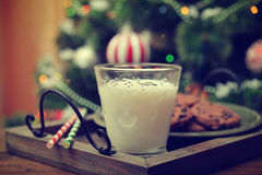 Milk and cookies for Santa Claus Stock Images