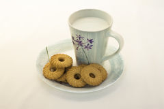 Milk and Cookies. Stock Photo