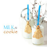 Milk and cookies. Royalty Free Stock Photography