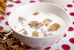 Milk and cornflakes Royalty Free Stock Photos