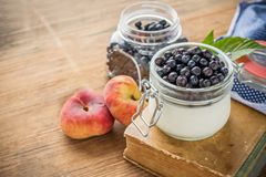 Milk cream with fresh blueberries for breakfast in Royalty Free Stock Photo