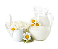 Milk, cream, sour cream and cottage cheese. Dairy Products. Milk, cream, sour cream and cottage cheese Royalty Free Stock Photo