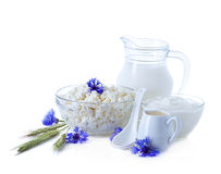 Milk, cream, sour cream and cottage cheese Stock Photography