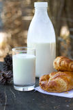 Milk and croissants royalty free stock photography