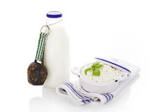 Milk and curd. Stock Photo