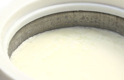 Milk curd Royalty Free Stock Photography