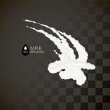 Milk 3D splash, isolated on black background Stock Images