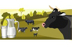 Milk and dairy on a background of green lawn and herd cows. Vector illustration Royalty Free Stock Image