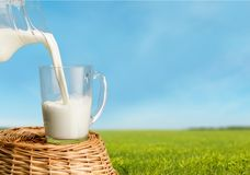 Milk. Dairy Product Pouring Glass Freshness Jug Rustic Royalty Free Stock Photo