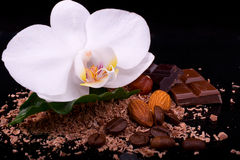 Milk and dark chocolate with white orchid flower, whole coffee Stock Images